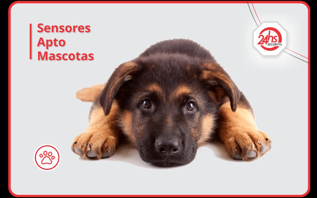 Sensores Apto Mascotas